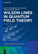 Wilson Lines in Quantum Field Theory