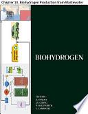 Biohydrogen Book