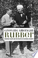 Growing American Rubber