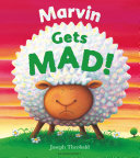 Marvin Gets MAD!