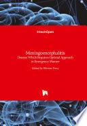 Meningoencephalitis