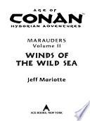 Age Of Conan Winds Of The Wild Sea