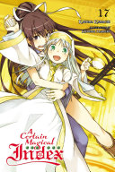 A Certain Magical Index  Vol  17  light novel