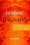 The Ecstatic Imagination