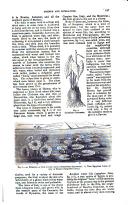 עמוד 167