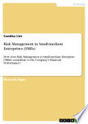 Risk Management in Small medium Enterprises  SMEs