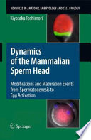 Dynamics of the Mammalian Sperm Head