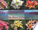 The Exotic Plumeria, a Pictorial