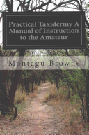 Practical Taxidermy a Manual of Instruction to the Amateur