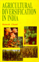 Capital Formation and Employment Generation in Rural India