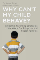 Why Can't My Child Behave? Pdf/ePub eBook