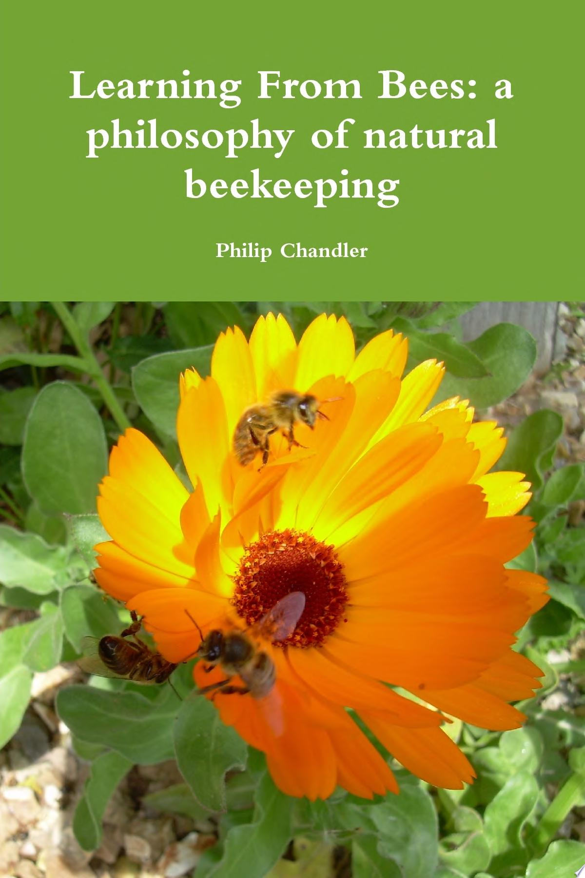 Learning From Bees  A Philosophy Of Natural Beekeeping