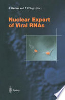 Nuclear Export of Viral RNAs