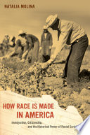 How Race Is Made in America  : Immigration, Citizenship, and the Historical Power of Racial Scripts