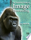 The Essential Guide To Image Processing Book PDF