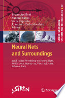 Neural Nets and Surroundings