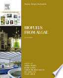 Biomass, Biofuels, Biochemicals