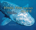 Fossil Fish Found Alive