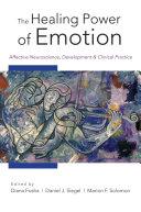 The Healing Power of Emotion  Affective Neuroscience  Development   Clinical Practice  Norton Series on Interpersonal Neurobiology
