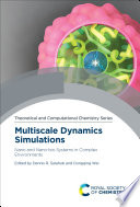 Multiscale Dynamics Simulations