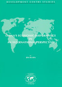 China s Economic Performance in an International Perspective