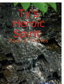 Ty's Heroic Spirit Book of Stories