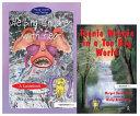 Helping Children with Fear   Teenie Weenie in a Too Big World