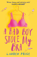 A Bad Boy Stole My Bra