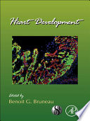 Heart Development