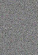 My Garden in Autumn and Winter