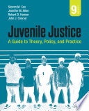 Juvenile Justice  : A Guide to Theory, Policy, and Practice