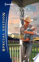 Fortune s Secret Baby