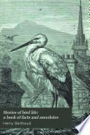 Stories Of Bird Life Book