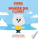 Poog the Polar Bear In