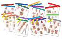 Netter Anatomy Charts  Complete Set of 16 Charts
