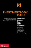 Phenomenology 2010