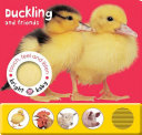 Bright Baby Touch  Feel and Listen  Duckling