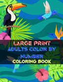 Large Print Adults Color By Number Coloring Book