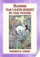 Bumper The White Rabbit In The Woods Book 2 In The Bumper The White Rabbit Series