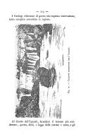 Pagina 115