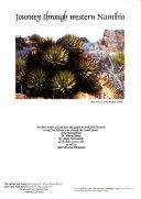 Journey Through Western Namibia