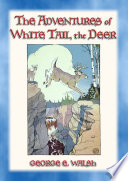 The Adventures Of White Tail The Deer With Bumper The Rabbit And Friends