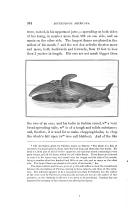 Сторінка 304