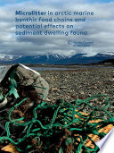 Microlitter in arctic marine benthic food chains and potential effects on sediment dwelling fauna