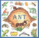 Pdf The Life and Times of the Ant