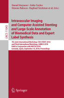 Intravascular Imaging and Computer Assisted Stenting and Large Scale Annotation of Biomedical Data and Expert Label Synthesis