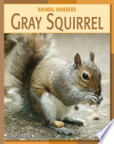 Gray Squirrel Book PDF