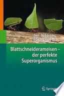 Blattschneiderameisen – der perfekte Superorganismus