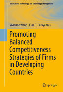 Promoting Balanced Competitiveness Strategies of Firms in Developing Countries