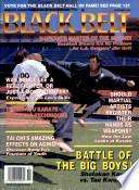 1993年11月